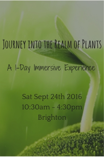 plant workshop